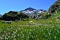 Beim Grossen Sankt Bernhard-Pass.jpg