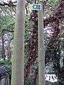 Benkid77 Brackenwood-Storeton footpath 10 240709.JPG