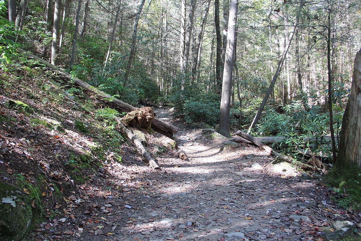 Hiking trail 2 - 5 2