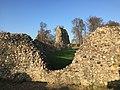 Berkhamsted Castle 3663.jpg