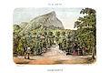 Bertichem 1856 jardim botanico rio janeiro.jpg