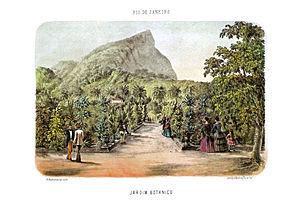 Rio de Janeiro Botanical Garden - Image: Bertichem 1856 jardim botanico rio janeiro