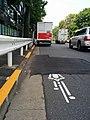 Bicycle lane in Minato-ku.jpeg