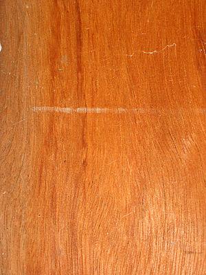 Bilinga (wood) - Bilinga panelling