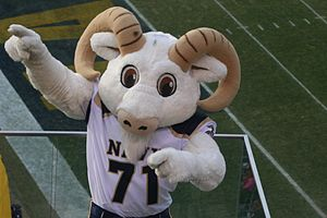 Bill the Goat - Bill the Goat, the human version, at the 2008 Army–Navy Game.