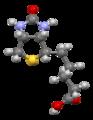 Biotin-view-1-from-xtal-Mercury-3D-balls.png