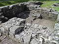 Birdoswald Roman Fort, Hadrians Wall (8750239547).jpg
