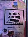 Birds aren't real 35C3 meme 012.jpg