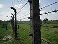 Birkenau Fences.JPG