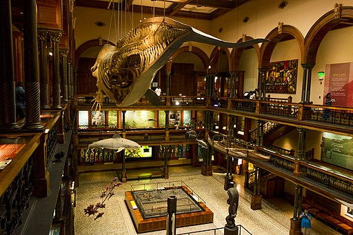 Bishop Museum - Virtual Tour