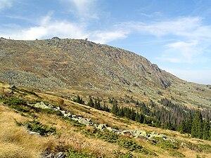 Golyam Rezen - Golyam Rezen Peak surmounting the Subalpine zone of Bistrishko Branishte.