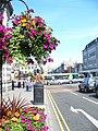 Blooming Aberdeen - geograph.org.uk - 1457012.jpg