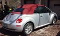 Blush New Beetle.png