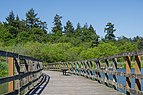 Boardwalk in Swan Lake Christmas Hill Nature Sanctuary, Saanich, British Columbia, Canada 07.jpg