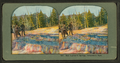 Bob Ingersoll's Springs, Yellowstone Park, from Robert N. Dennis collection of stereoscopic views.png