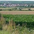 Bockenheim - panoramio (1).jpg