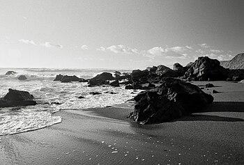 English: Rocks on the beach near Bodega Bay, C...