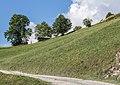 Boerenschuren tussen Waltensburg-Vuorz en Breil-Brigels. (d.j.b.) 02.jpg