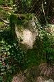 Bois des Roches Souzy-la-Briche n6.jpg
