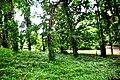 Botanic garden limbe88.jpg