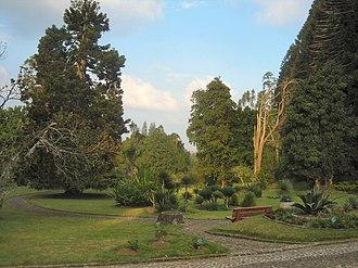 Bogor Regency - Image: Botanical garden Cibodas Indonesia 4