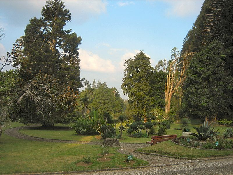 Salah Satu Taman di Kebun Raya CIbodas