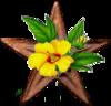 Botany Barnstar.png