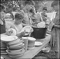 Boy Scouts Pick Fruit For Jam- Life on a Fruit-picking Camp Near Cambridge, England, UK, 1943 D16201.jpg