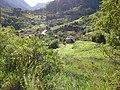 Brasil Rural - panoramio (45).jpg