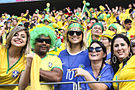 Brazil and Colombia match at the FIFA World Cup 2014-07-04 (37).jpg