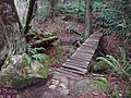 Bridge along trail behind Heritage Park - panoramio.jpg