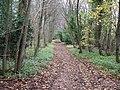 Bridleway to Blockley - geograph.org.uk - 1605407.jpg
