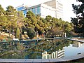 Bright Sunshine inSaiee Park, Tehran, Iran - panoramio.jpg