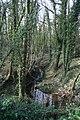 Brook in Worsley Covert - geograph.org.uk - 1192595.jpg