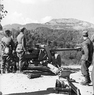 7.5 cm Pak 40 - 7,5 cm Pak 40 in Albania in 1943