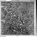Bundesarchiv Bild 196-02260, Schivelbein.jpg