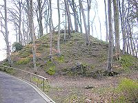 Burgstall Eurasburg.jpg