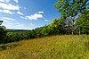 C.F. Messinger Dry Prairie & Savanna Preserve.jpg