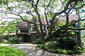 C. M. Cooke, Jr. Historic Residence III.JPG