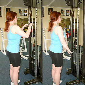 Body for Life - The pushdown is used to exercise the triceps muscle.