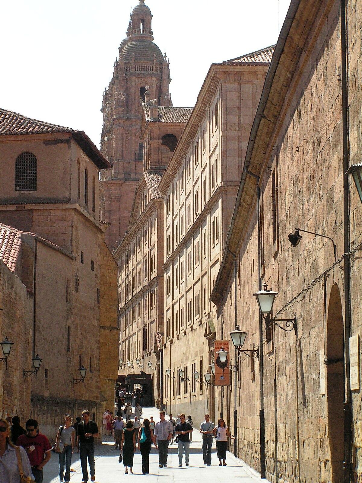 Salamanca travel guide at wikivoyage - Calle valencia salamanca ...