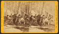 Camp at noon at Thomas Foster's, by Jenney, J. A. (James A.).png