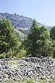 Camping Morteratsch - panoramio (13).jpg