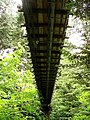 Capilano-Suspension-Bridge-8941.jpg