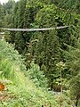 Capilano-Suspension-Bridge-9041.jpg