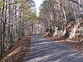 Carretera CC-1.2.JPG