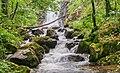 Cascade des Palanges (9).jpg