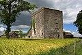 Castles of Leinster, Shrule, Laois (1) - geograph.org.uk - 2495037.jpg
