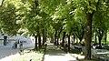 Center, Odessa, Odessa Oblast, Ukraine - panoramio - Дмитрий Ванькевич (88).jpg