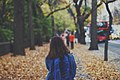 Central Park, New York, United States (Unsplash alROYtC8fDw).jpg